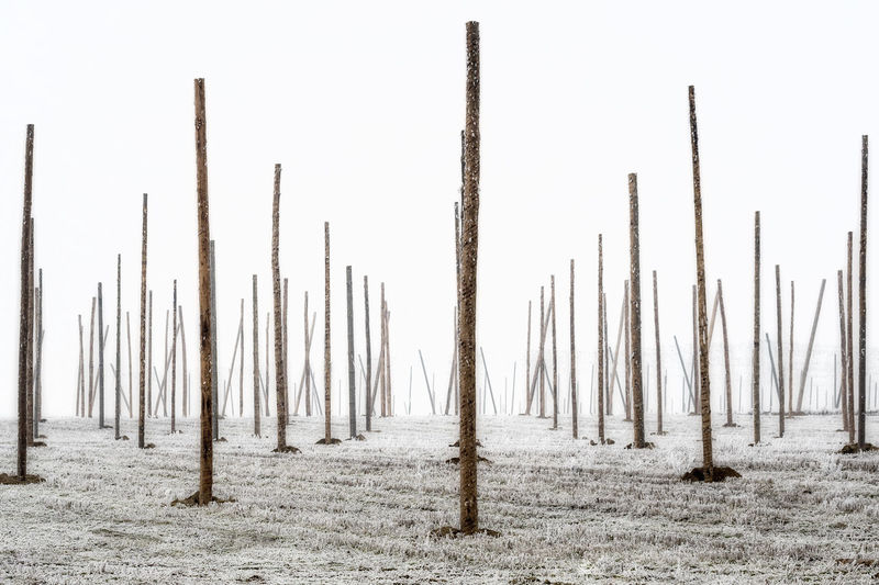 Wooden Poles On Snow Covered Field Against Clear Sky