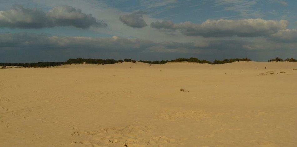 Sand Dune Sand Desert Water Flamingo Horizon Sky Landscape Cloud - Sky