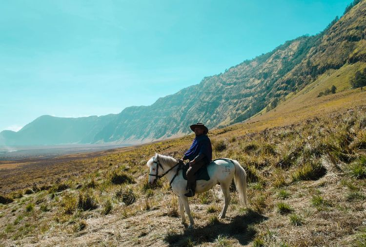 Horseman in the middle of Mountain . Travel Photography Travel Destinations Travelling Photography Travel Teletubbies Hills Teletubbies Bromo Mountain Bromo Horseman Horse Mammal Domestic Domestic Animals Animal Themes Pets Animal Horse Mountain One Animal Working Animal Mountain Range Vertebrate Livestock Horseback Riding Animal Wildlife Sky Nature Real People Scenics - Nature Beauty In Nature EyeEmNewHere