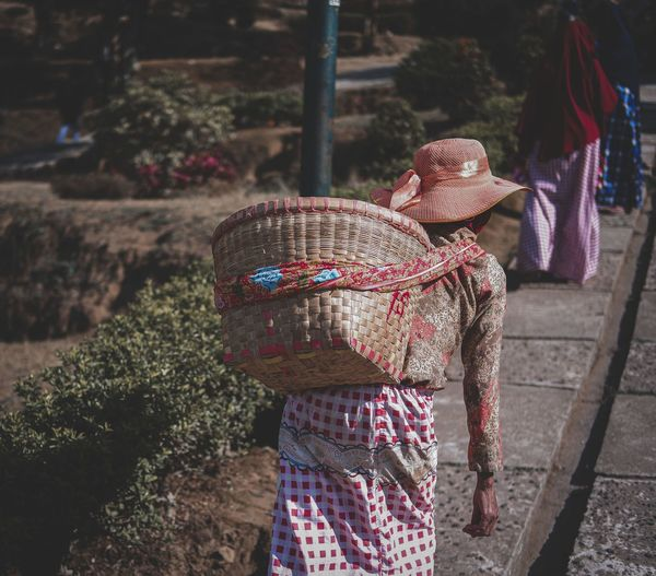Rear view of woman carrying basket