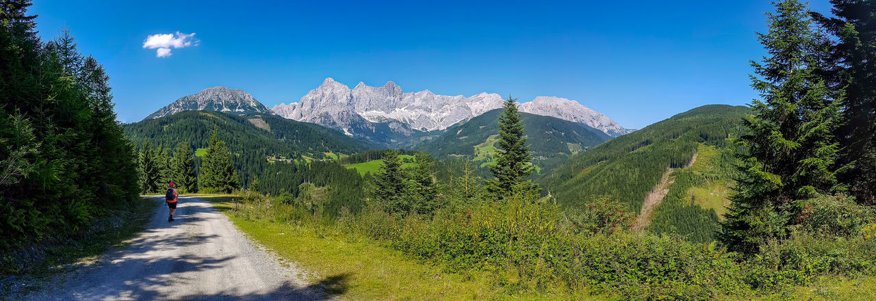 Hiking in the alps Panorama Adult Adventure Beauty In Nature Blue Day Forest Full Length Green Color Hiking Landscape Mountain Mountain Range Nature One Person One Woman Only Outdoors People Pinaceae Pine Tree Scenics Sky Summer Tree Walking