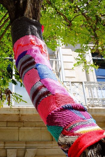 Tree Yarn Bombing Yarn Tree Trunk Tree And Leaves Vilanovailageltru España SPAIN