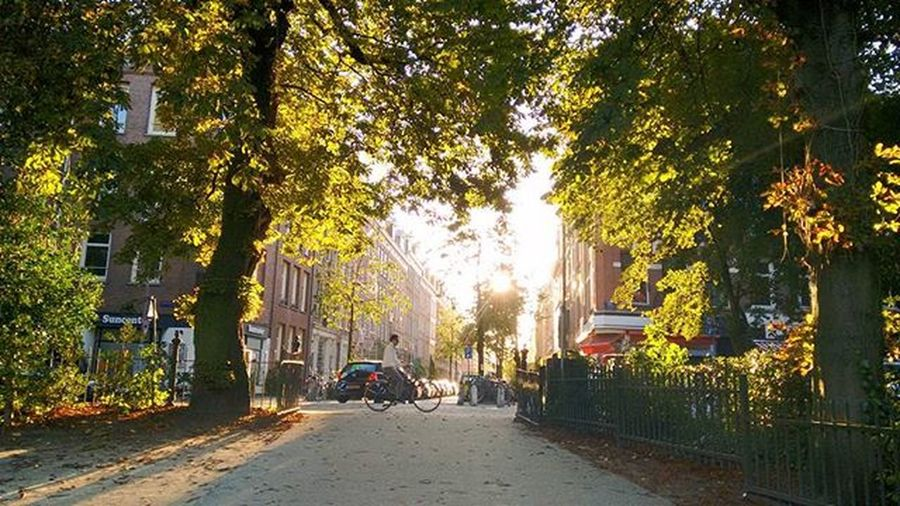 Lovely day, great light SpringlightAutumnlight Afternoon Amsterdam