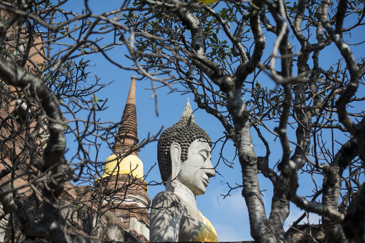 Low angle view of buddha statue and bare trees at temple against sky