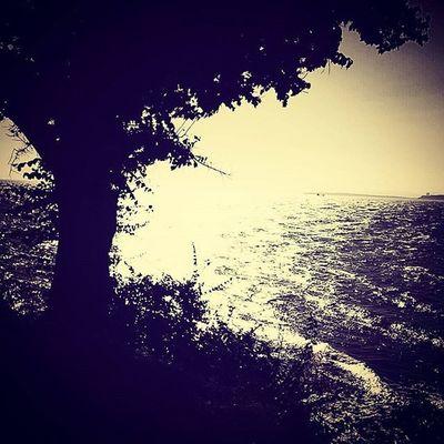 Huzur Karanlik Bir Bakis Bizim Icin Great Photo Dark Day Cry