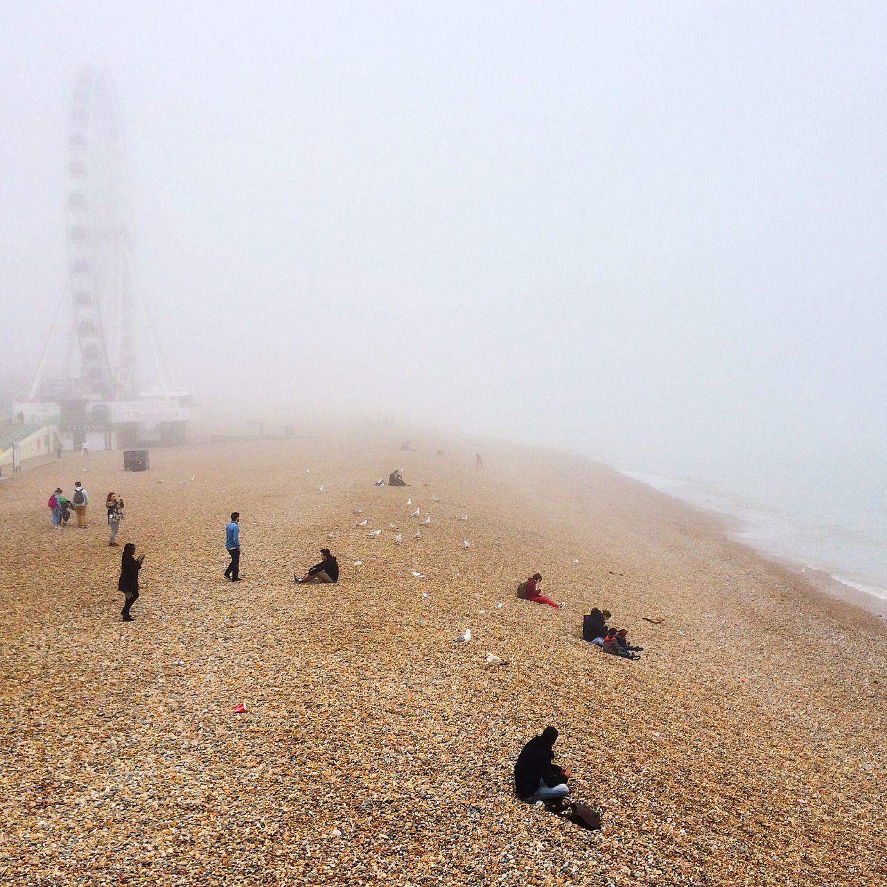 People On Rocky Beach On Foggy Day