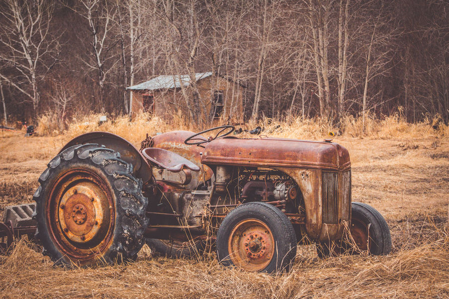 Abandoned Abandoned & Derelict Abandoned Farm Abandoned Places Back In The Day Bygone Era Bygone Times Day Deserted Farm Grassy History Memories Ontario, Canada Outdoors Overgrown Rusted Rusty Autos Rusty Tractor Rustygoodness The Week On EyeEm Tractor Vintage Vintage Beauty Vintage Moments