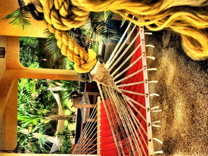 Seasons in the Sun Seasons In The Sun Colour Of Life Home Is Where The Art Is Puerto Rico Hammock