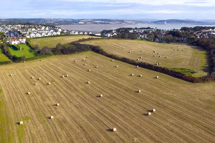Drone  Langland Bay Agriculture Beauty In Nature Cloud - Sky Day Dronephotography Farm Field Growth Landscape Nature No People Outdoors Rural Scene Scenics Sky Tranquil Scene Tranquility Tree