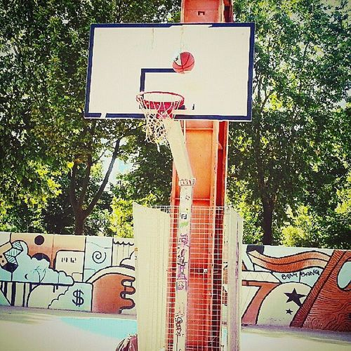 Passion. Basketball Basket BasketBallneverStops Hoop net bball baller court heart love passion sport amazing instabballer instaball nba ball wnba spalding nature graffiti graffitiporn mural art backboard throw shoot TagsForLikes turin italy