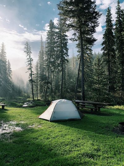 Tent on field against trees in forest against sky