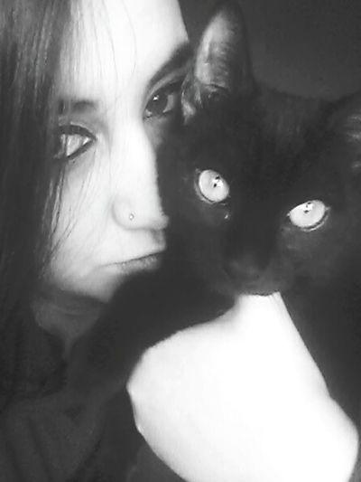 Keque =*.*= Cat Eyes Cat♡ Ilovemycat I Love Cats Amorgatuno Cat Lovers Blackandwhite Consentido Catlovers BLackCat