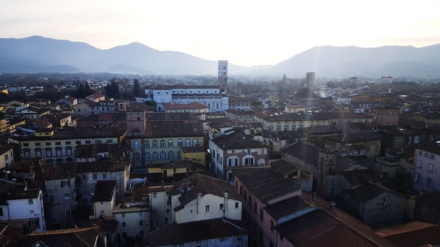 Lucca from Torre Guinigi Torre Guinigi Medieval City MedievalTown Medieval Architecture Tuscany Italy Lucca Lucca Italy Tuscany Nopeople Church Buildings Medieval Architecture MedievalTown Medieval Tower Business Finance And Industry Skyscraper Day City Sky