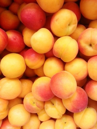 Apricot time Healthy Eating Food And Drink Food Fruit Apricot Market Market Stall Orange