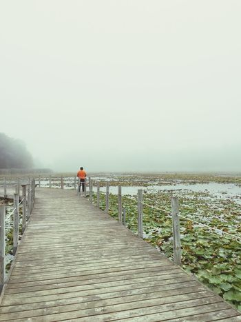 Boardwalk Minnesotaphotographer Minnesota IPhoneography Outdoors Tranquil Scene Calm Standing Water Beauty In Nature Tranquility Water Fog Foggy Morning Foggy Day Foggy Weather Foggy Landscape Foggyweather Mist Lake View Misty Morning Misty Mornings