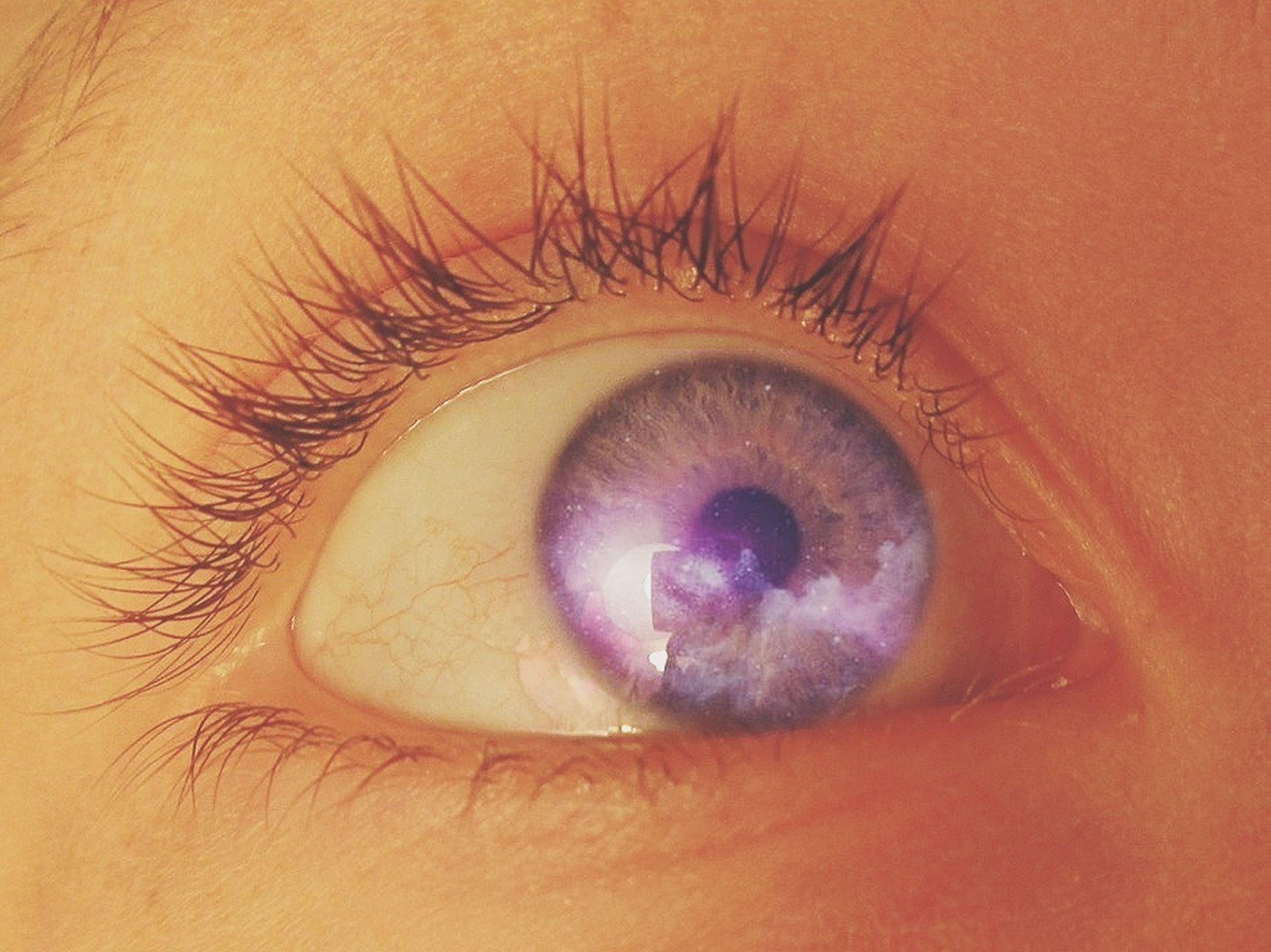 human eye, close-up, eyelash, part of, eyesight, unrecognizable person, sensory perception, person, iris - eye, extreme close-up, cropped, human skin, eyeball, indoors, human finger, circle, lifestyles