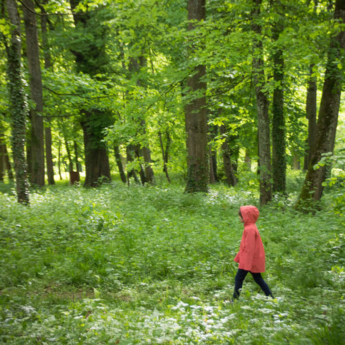 Springtime Spring Park Green Tree Plant Forest Land One Person Full Length Walking Green Color Nature Day WoodLand Clothing Casual Clothing Women Standing Tree Trunk Trunk Side View Adult Outdoors Nature Beauty In Nature Hood Childhood Child Pink Color Alone