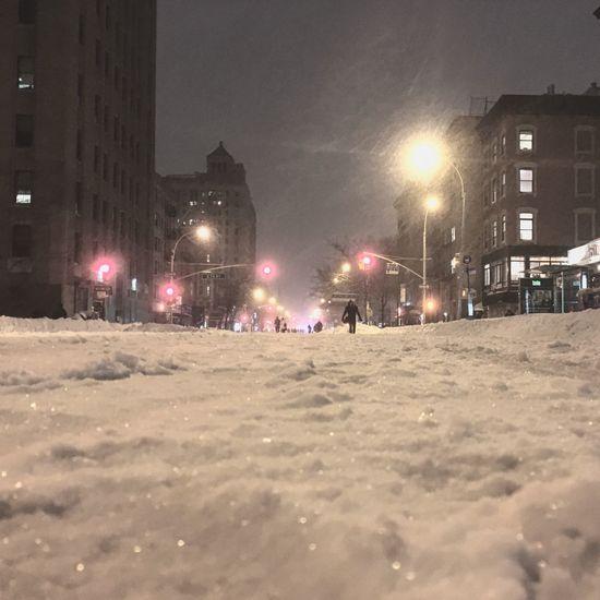 The Purge Snow