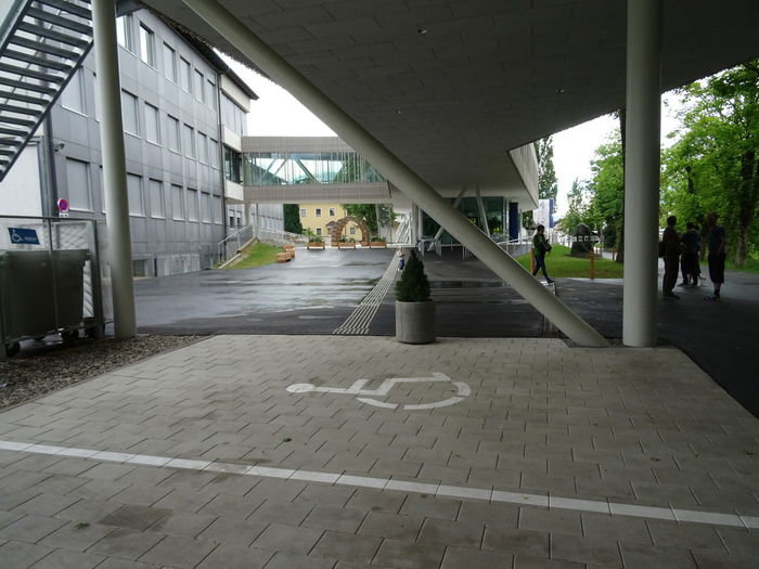 Architecture Built Structure Architectural Column Day Building Exterior Footpath No People Flooring Empty The Way Forward Building Absence Outdoors Direction City Nature Tiled Floor Tile Tree