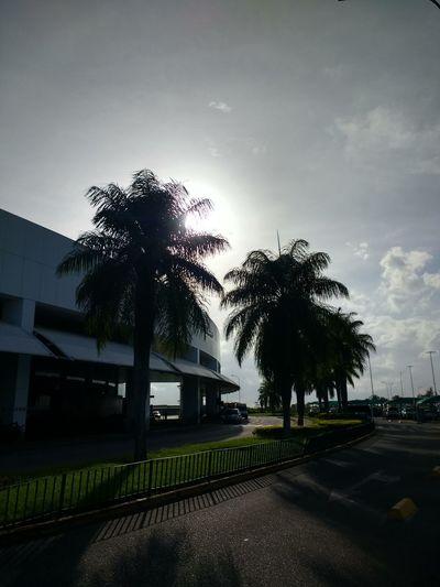 Maceió - AL Motog4 Day Architecture City Outdoors Alagoas Aeroport ✈ Céu Azul. Aviation City Street Sole...☀ Aeroport Close-up Sunlight Zumbidospalmares