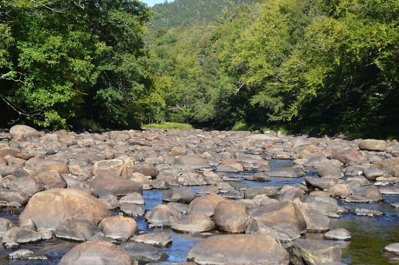 Scenic view of rocks by lake