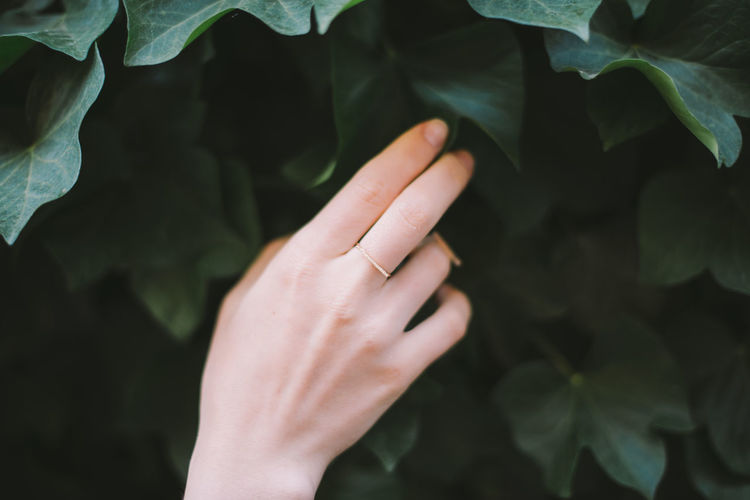Green Color Hands Body Part Close-up Day Finger Greenery Growth Hand Human Body Part Human Finger Human Hand Human Limb Leaf Leaves Lifestyles Nature One Person Outdoors Plant Plant Part Real People Touching Unrecognizable Person Women