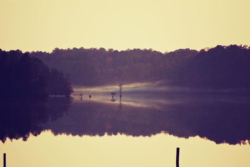 """Ghosts... Another picture from one of my state park hikes. I was able to catch this """"ghost"""" traveling down the lake before it disappeared around the bend. The Traveler - 2018 EyeEm Awards Sky Skyporn Scenics - Nature Beautiful Color State Park  Hiking Adventure The Great Outdoors - 2018 EyeEm Awards Water Tree Irrigation Equipment Lake Fog Bird Silhouette Rural Scene Reflection Dawn Reflecting Pool Reflection Lake Standing Water Calm Lakeside Lakeshore"""