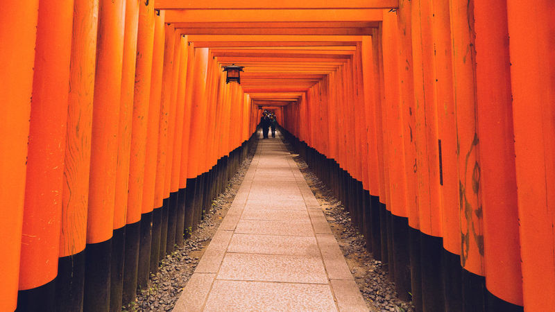 Inari Shrine Japan Japan Photography Architecture In A Row Religion Shrine Spirituality The Way Forward Travel Destinations