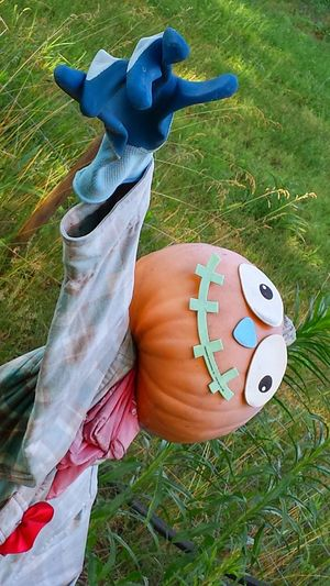 New Jersey Scarecrow Summer Check This Out No People green grass Mount Holly NJ Usa