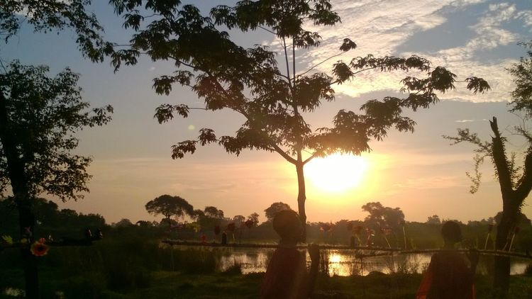 Sunset Tree Nature Sun Silhouette Social Issues Sunbeam Grass No People Beauty In Nature Outdoors Water Sky Day