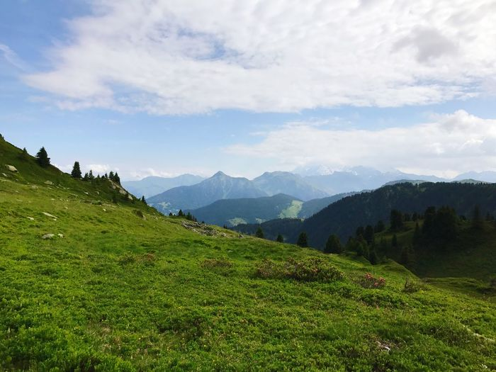France Alps Mountain Mountain Range Cloud - Sky Nature Agriculture Beauty In Nature Sky Landscape Green Color Scenics Field Growth No People Outdoors Day Grass