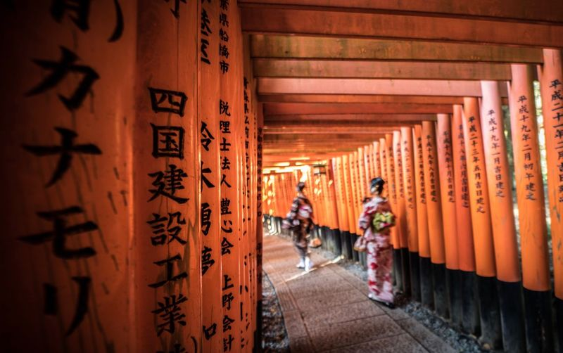 Orange Fushimi Inari Shrine Japan Photography Real People Place Of Worship Architecture Lifestyles Architectural Column Entrance Travel Destinations The Way Forward Outdoors Day Finding New Frontiers