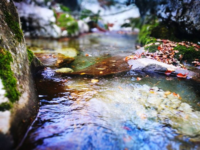 Water River No People Nature Outdoors Day Moss Forest Beauty In Nature Tree Close-up Motion Rock - Object Beauty In Nature Power In Nature Autumn Wilderness Nature Riverside