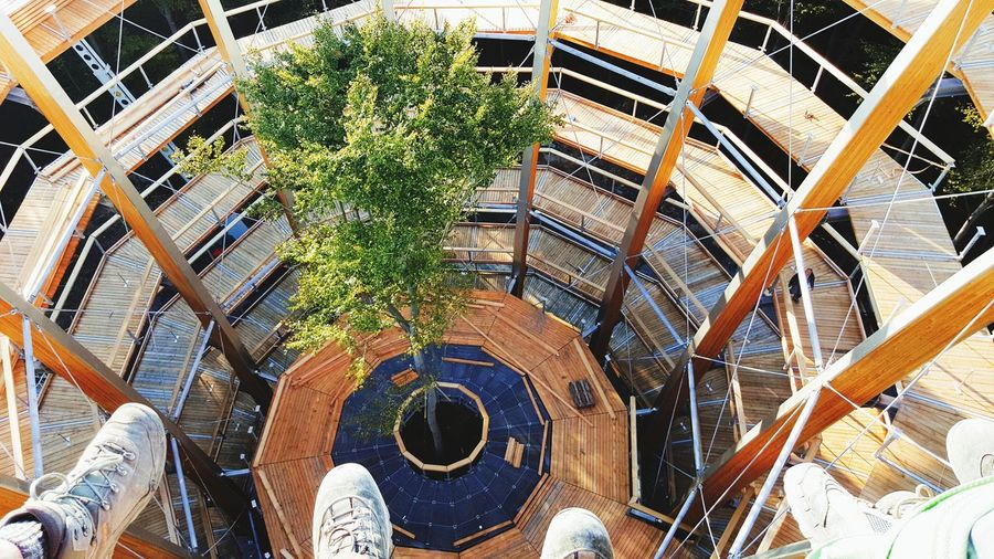 High Angle View Outdoors Day Nature Architecture Plant Beautyful Day Tree Working Hard Working Ebrach German