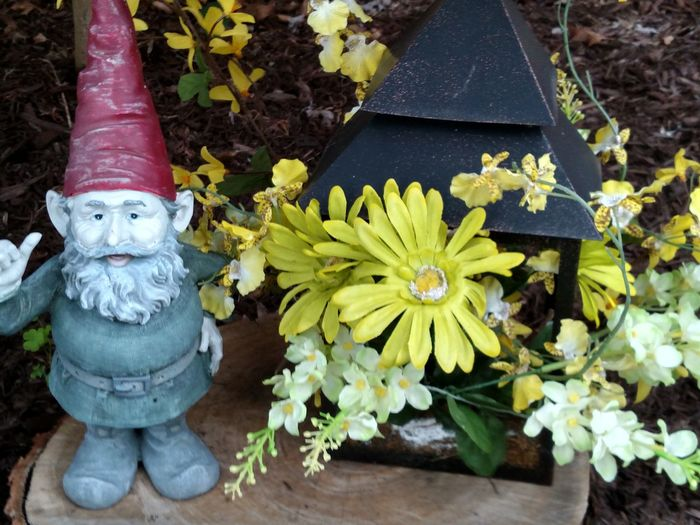 Lawn Decoration Lawn Ornament Garden Decor Gnome Gnomes Of EyeEm Gnome Mans Land Nature On Your Doorstep Landscape Detail Perspective Photography Lawn And Garden Lawn Art Flowerbed