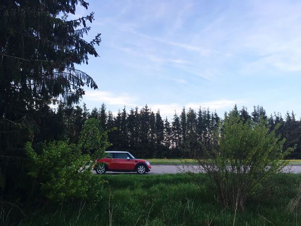 Car Sky Transportation Tree Land Vehicle Growth Mode Of Transport Field Nature Day No People Stationary Outdoors Beauty In Nature Grass Red Cooper Mini Cooper Red Car Cooper Beauty In Nature