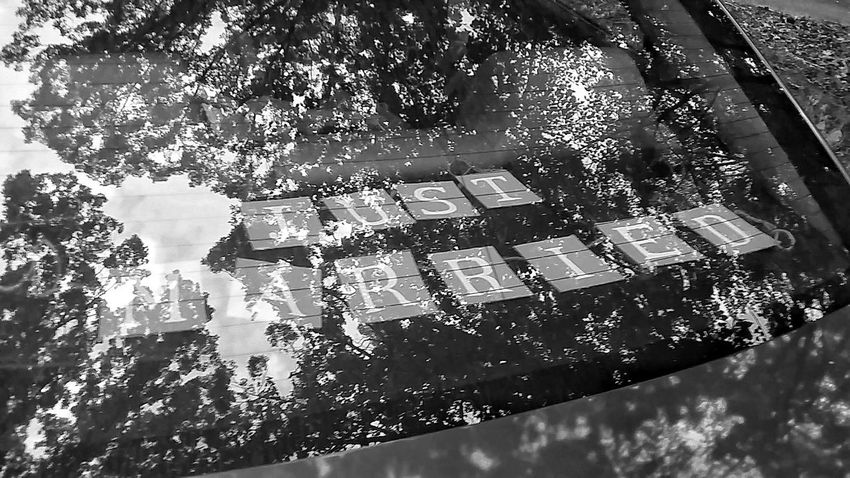Just Married Black & White Blackandwhite Photography Tree Reflection  Reflections Reflection Photography Tree Reflection  Blackandwhite Black And White Photography Car Window Reflection Just Married! Just Married! ♥ Window Reflections On Car Married Tree Outdoors No People Car Window Photography