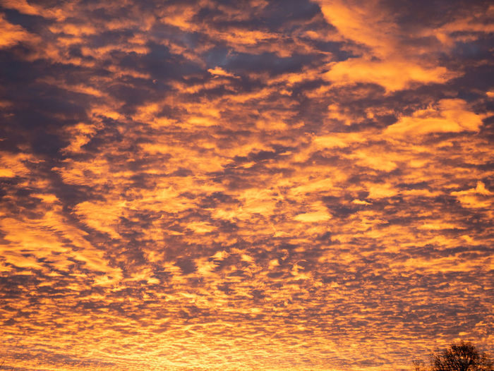 Sunset Cloud - Sky Orange Color Sky Backgrounds Beauty In Nature Tranquility No People Full Frame Scenics - Nature Tranquil Scene Nature Dramatic Sky Idyllic Low Angle View Outdoors Sunlight Awe Abstract Environment