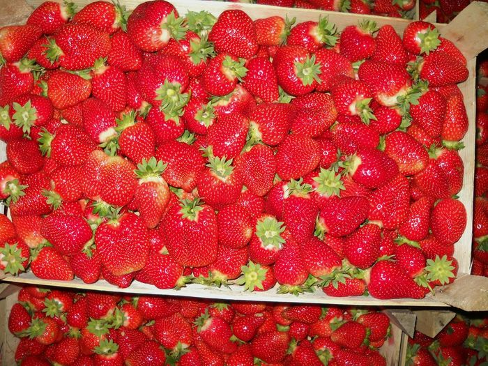 Red Fruit Healthy Eating Freshness Strawberry Abundance Food And Drink Food No People Close-up Choice Day Indoors