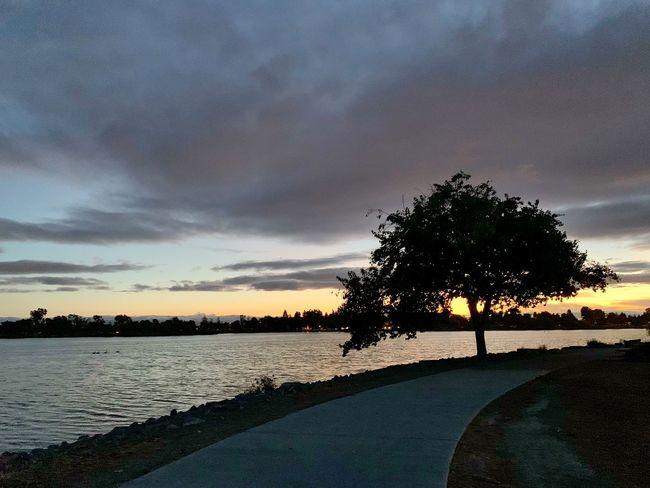 Twilight Twilight Fremont Lake Elizabeth Tree Sky Plant Water Beauty In Nature Nature Scenics - Nature