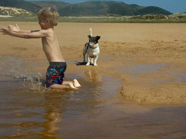 Water Water Reflections Child Playing Playing With Water Beach Beach Life Jackrussell Naturelovers Sunday Family Time