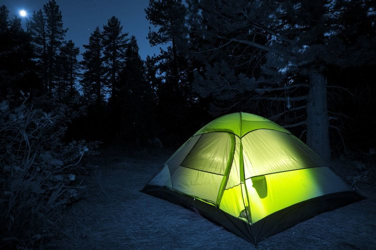 Tent against trees at night