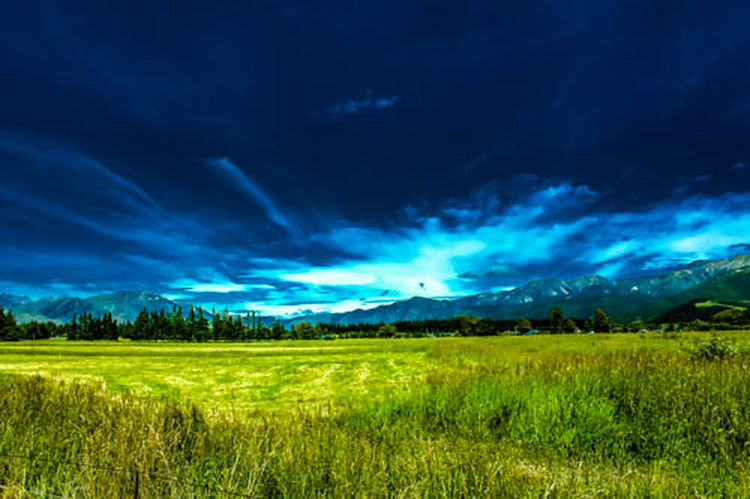 Blue Landscape Green Color Meadow Grass Nature Field Sky Beauty In Nature Springtime Outdoors Scenics Thunderstorm No People Day Exceptional Photographs Capture The Moment EyeEmbestshots Frommypointofview Novice Photography Hanmer Springs Southislandnz The Great Outdoors - 2017 EyeEm Awards