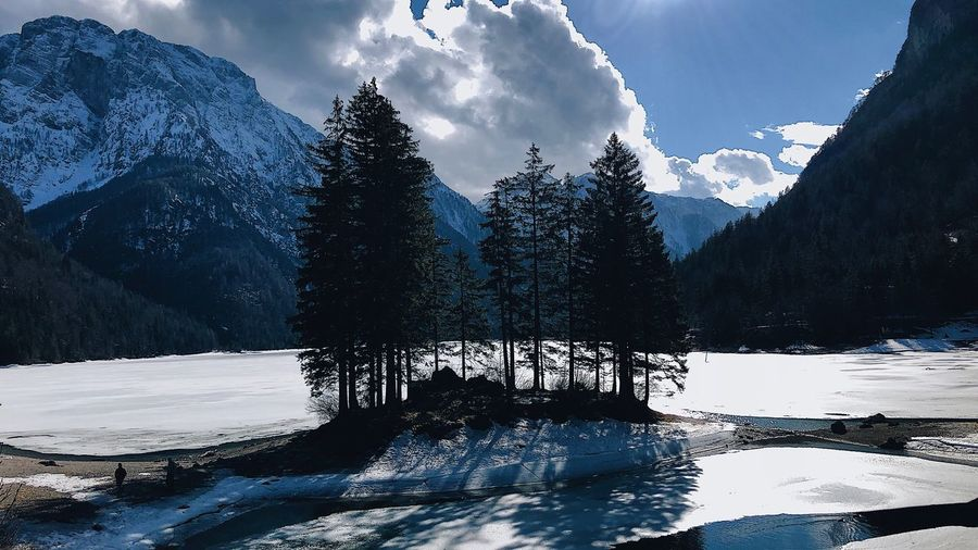 Predil Lake Italy Italy 🇮🇹 Lake View Trees Lake View, Mountain, Nature, Green, Blue Sky, Clouds, Summer, Outdoors, Spring, Water, Ducks Lake View Island Trees Sunset Over Water Sunset Over Lake Frozen Lake Lago Di Predil Predil Lake Predil Water Sky Tree Nature Cloud - Sky Plant Day Reflection No People Outdoors Beauty In Nature Waterfront Low Angle View