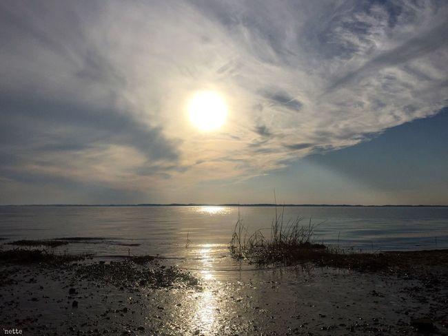 Finding New Frontiers Blackwater National Wildlife Refuge