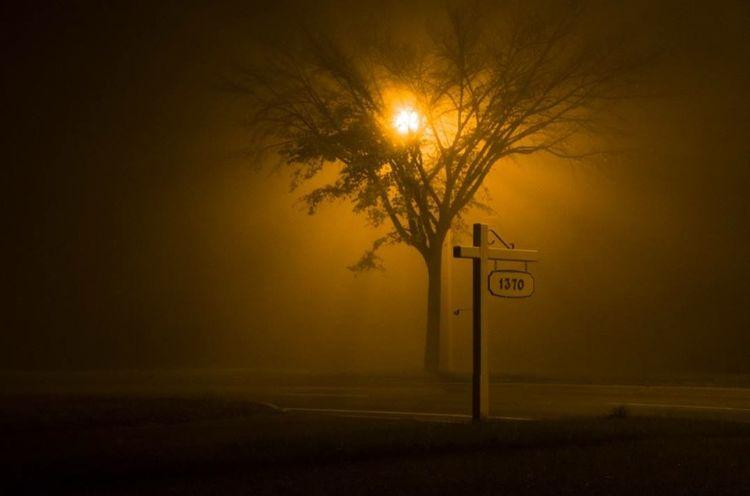 Creative Light And Shadow J'ai pris cette photo en face de chez moi . Un brouillard épais.I took this photo in front of my house. A thick fog . Fog Light And Shadow Light Darkness And Light Eye4photography