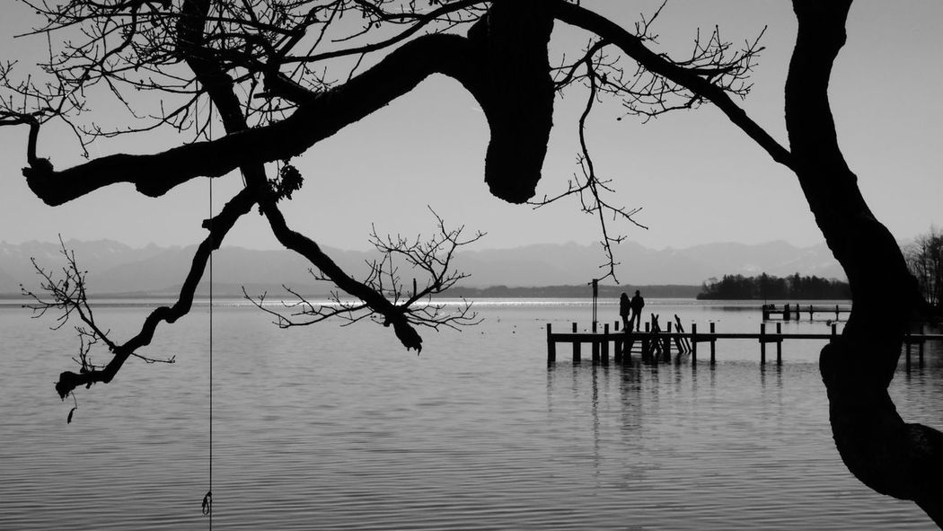 Purplesnail Bare Tree Beauty In Nature Black Branch Day Lake Leisure Activity Lifestyles Men Nature Outdoors People Real People Rope Swing Scenics Silhouette Sky Starnbergersee Togetherness Tranquility Tree Two People Water