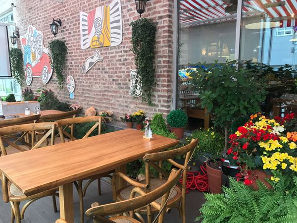 Terrace Summer Vibes Summertime Summer Views Restaurant Decor Restaurants Restaurant Moscow Plant Flowering Plant Flower Growth Table Seat Architecture Nature Chair Built Structure Business Building Exterior No People Wood - Material Green Color Potted Plant Freshness Flower Pot Day