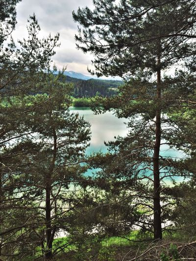 Silbersee Villach Lake View Trees And Sky Blue Sky Water Check This Out Taking Photos