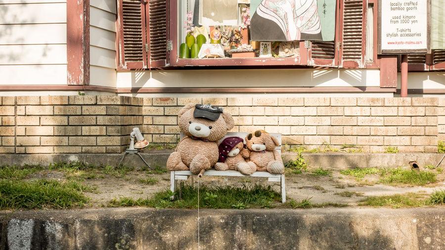 在路邊悠閒釣魚的小熊們 Kyoto, Japan Sunlight Toy Bear 京都 哲學之道 夏日風情 日本 玩具熊 Rx100m3 Japantrip 2017 日本旅遊2017